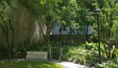 Solicitamos al Municipio de Monterrey intervenir para resolver protección jurídica y mantenimiento del Parque Ciudadano